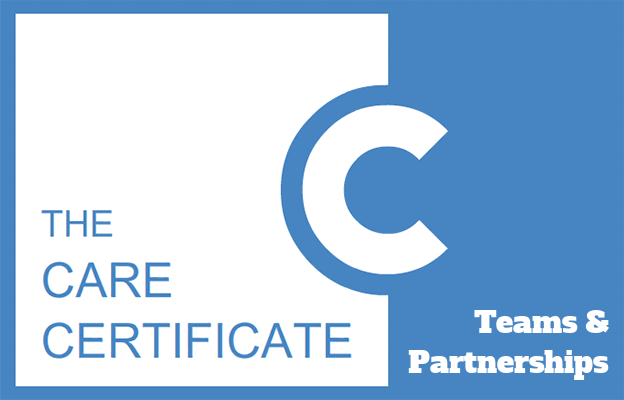 Teams & Partnerships - Care Certificate