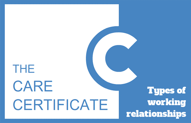 Types of working relationships - Care Certificate