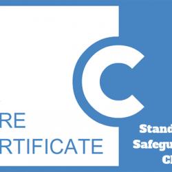Standard 11: Safeguarding Children