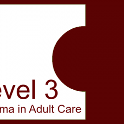 LEVEL 3 DIPLOMA IN ADULT CARE ANSWERS