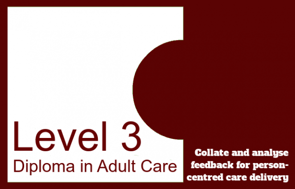 Collate and analyse feedback for person-centred care delivery - Level 3 Diploma in Adult Care