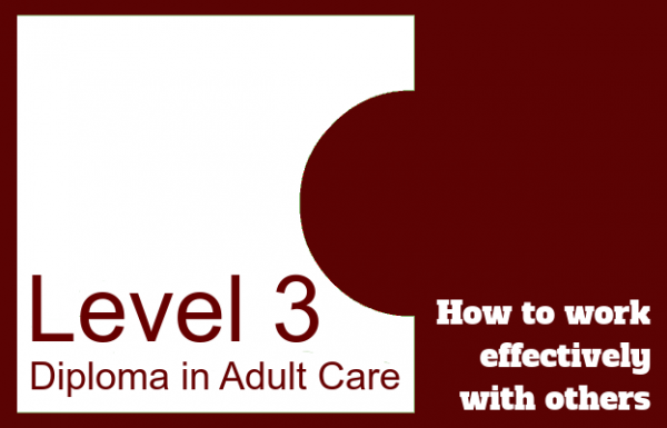 How to work effectively with others - Level 3 Diploma in Adult Care