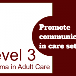 Promote Communication in Care Settings