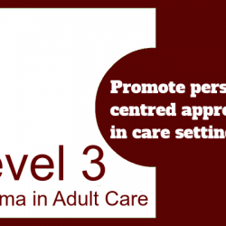 Promote Person-Centred Approaches in Care Settings