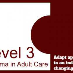 Adapt actions and approaches in response to an individual's changing needs or preferences