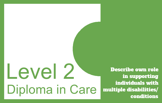 Describe own role in supporting individuals with multiple conditions/disabilities -Level 2 Diploma in Care