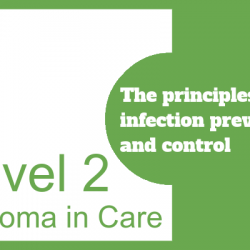 The Principles of Infection Prevention and Control