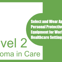 Select and Wear Appropriate Personal Protective Equipment for Work in Healthcare Settings