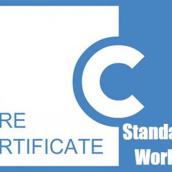 Care Certificate Workbook Standard 12 Answers