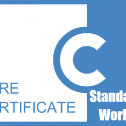 Care Certificate Workbook Standard 13 Answers