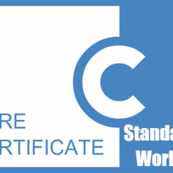 Care Certificate Workbook Standard 14 Answers