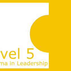 Level 5 Diploma in Leadership Answers