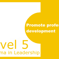 Promote Professional Development