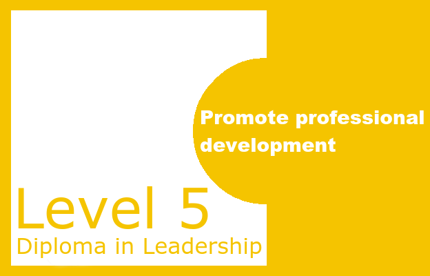 Promote professional development - Level 5 Diploma