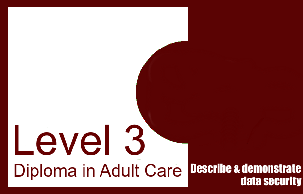 Describe and demonstrate data security - Level 3 Diploma in Adult Care
