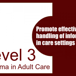 Promote Effective Handling of Information in Care Settings