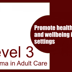 Promote Health, Safety and Wellbeing in Care Settings