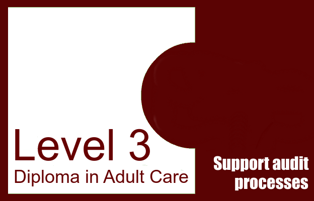 Support audit processes - Level 3 Diploma in Care