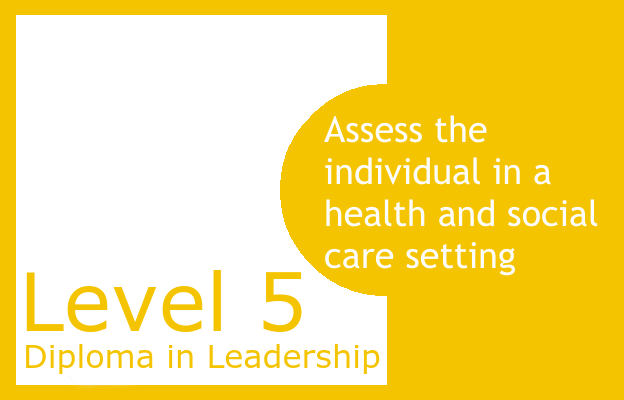 Assess the individual in a health and social care setting - Level 5 Diploma