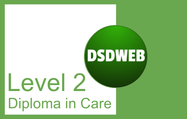 Level 2 Diploma in Care - DSDWEB