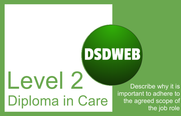 Describe why it is important to adhere to the agreed scope of the job role - Level 2 Diploma in Care - DSDWEB.