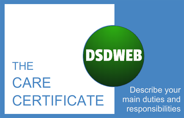 Describe your main duties and responsibilities - Care Certificate - DSDWEB.