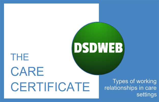 Types of working relationships in care settings - Care Certificate - DSDWEB.