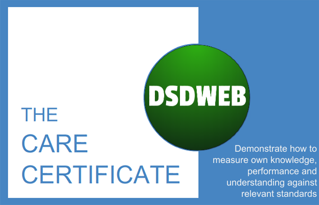 Demonstrate how to measure own knowledge, performance and understanding against relevant standards - Care Certificate - DSDWEB.