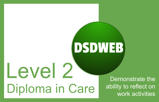 Demonstrate the ability to reflect on work activities - Level 2 Diploma in Care - DSDWEB.
