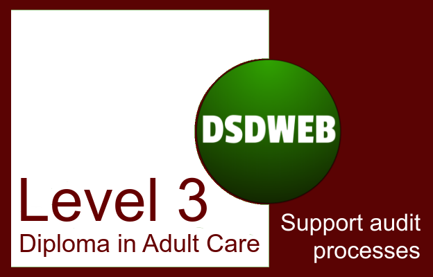 Support audit processes - Level 3 Diploma in Adult Care - DSDWEB.