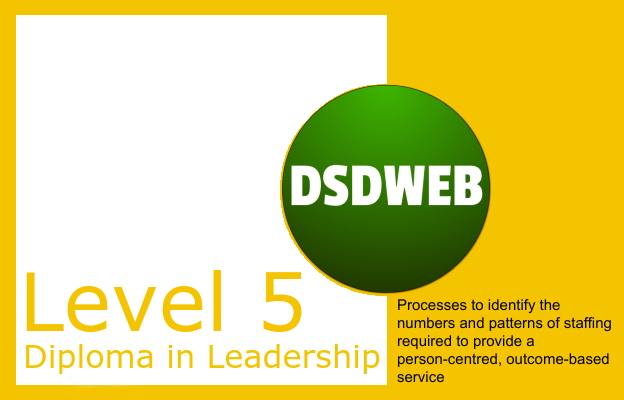 2.4 Processes to identify the numbers and patterns of staffing required to provide a person-centred, outcome-based service - Level 5 Diploma in Leadership & Management - DSDWEB.